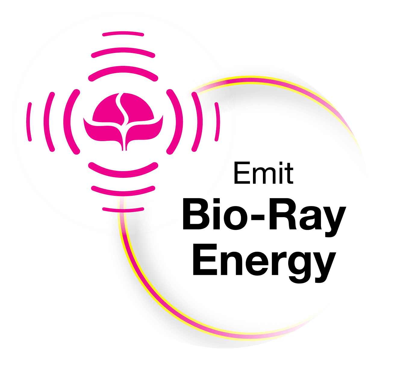 Bio-Ray Technology Logo
